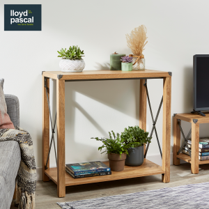 Rustica Console Unit with plants and books and metal crosses with metal corners, a rustic look